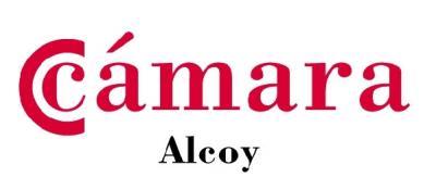 Cámara Alcoy