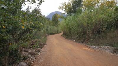 Ayudas acondicionamiento caminos rurales