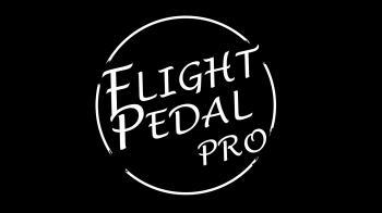 Flight Pedal Pro