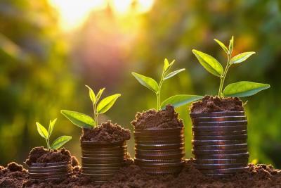 negocio sostenible