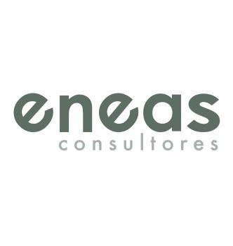 ENEAS CONSULTORES SL