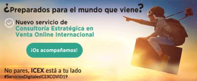 Servicio de consultoría estratégica en venta online internacional de ICEX eMarketServices