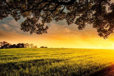 Curso de emprendimiento en el medio rural