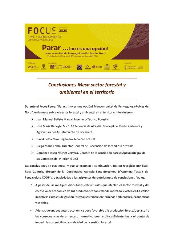 Conclusiones Mesa sector forestal y ambiental en el territorio