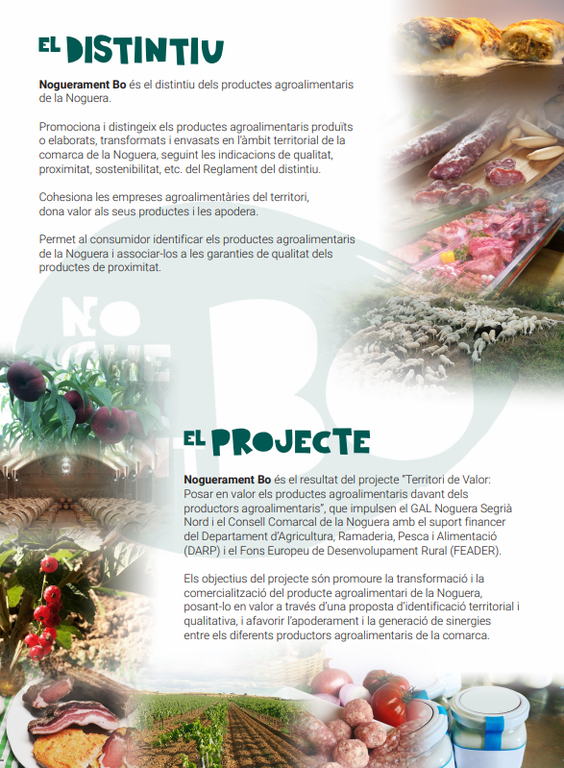 Proyecto Noguerament Bo